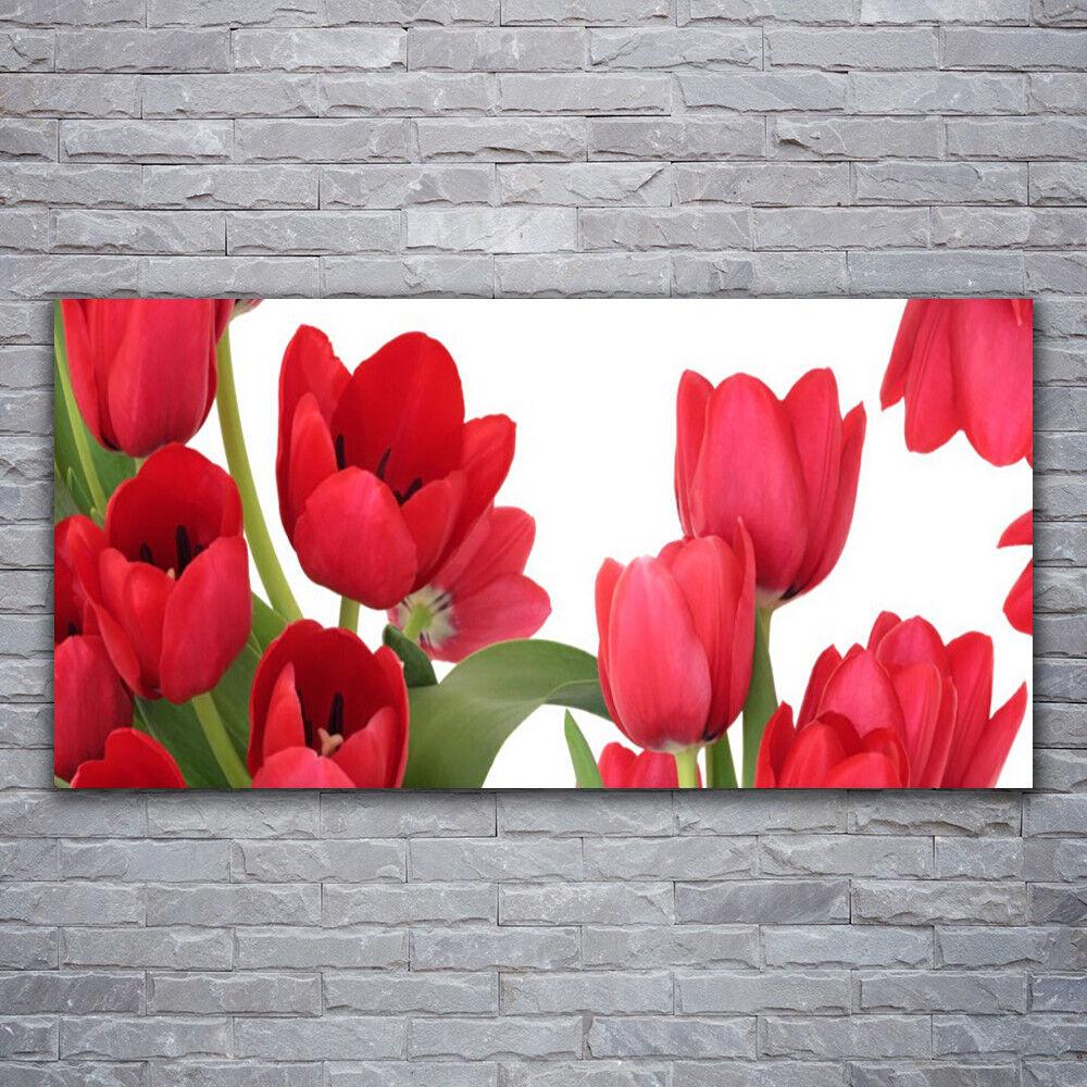 Photo sur toile toile toile Tableau Image Impression 120x60 Floral Tulipes e31466