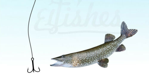 "2pcs Fishing Steel Lure Rig 15cm//6/"" Circle Triple Fishing Hook #1//0 Trolling Jig"