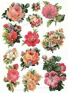 feuilles-CHROMOS-Danois-repro-bogen-12-magnifique-fleurs-beau-courbe-amp