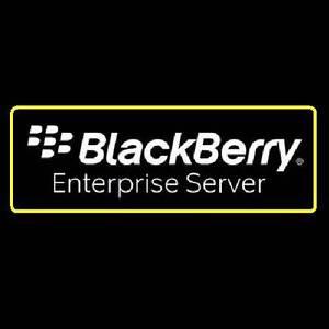 Belle Blackberry Enterprise Serveur ( Bes ) Pour Lotus Domino V4.1 [5 Utilisateur