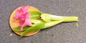 Analytique 1.12 échelle Violet Orchid Poupées Maison Miniature Jardin De Fleurs Accessoire S26-afficher Le Titre D'origine