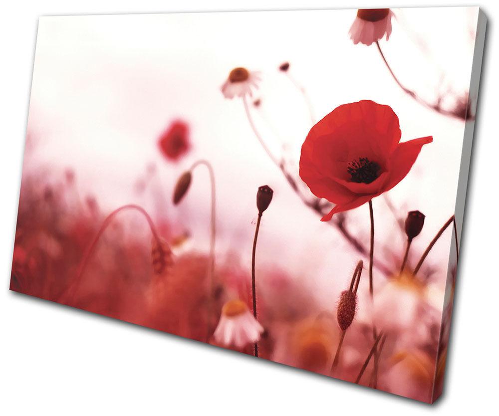 Floral Poppies Flowers SINGLE Leinwand Wand Kunst Bild drucken