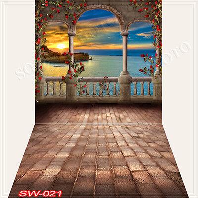 Indoor 10'x20'Computer/Digital Vinyl Scenic Photo Backdrop Background SW021B88