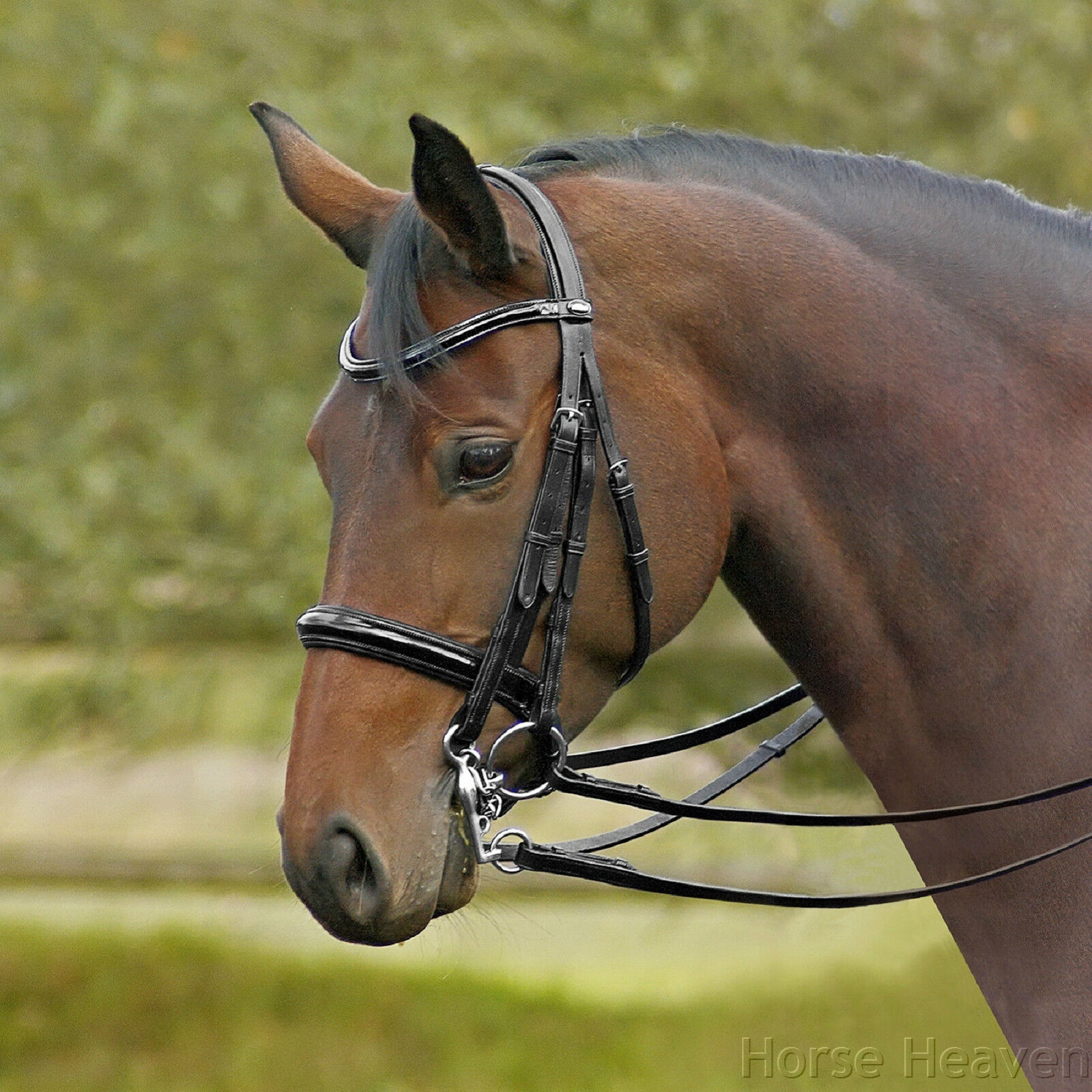 Busse Glamour Patent Leather Double Bridle Comfort Headpiece Clearance Sale