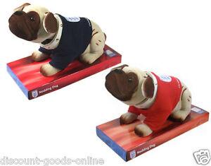 ENGLAND-FA-NODDING-DOG