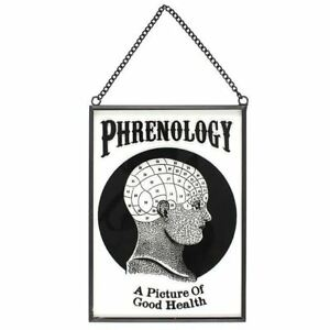 Phrenology-Skull-Glass-Hanging-Sign-Occult-Witch-Divination-Halloween