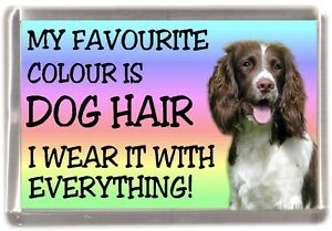 English-Springer-Fridge-Magnet-034-My-Favourite-Colour-is-Dog-Hair-034-by-Starprint