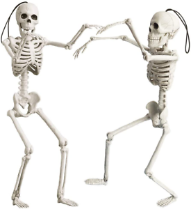 16-Halloween-Posable-Skeletons-Realistic-Spooky-Full-Body-Hanging-Skeletons-Hall