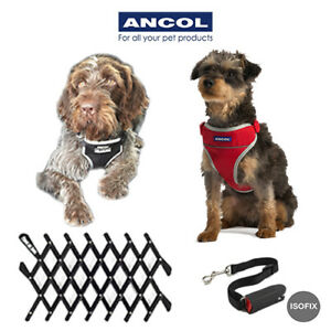 Ancol Padded Travel Car Exercise Dog Harness Puppy Seatbelt Isofix