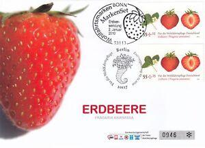 180570-Beleg-Bund-Erdbeere-2010-FDC-aus-Markenset-Bogen