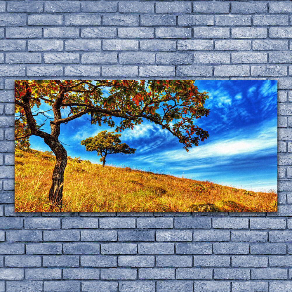 Glass print Wall art 140x70 Image Picture Meadow Trees Nature