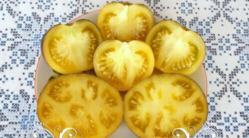 Tomate rayures d/'Antan jaune bleu Tomates Ukraine 20 Graines d Farmer/'s Dream