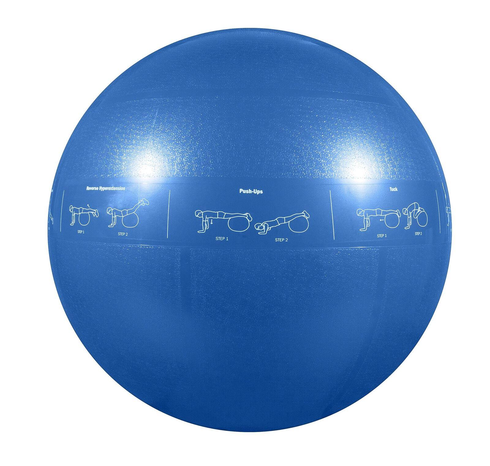 GoFit Professional Stability Ball Blau 55 cm