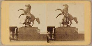 Photo-d-une-statue-Cheval-a-identifier-Stereo-Vintage-Albumine-ca-1875