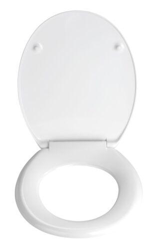 Picture Novelty Toilet SeatsFun Replacement Toilet Seats