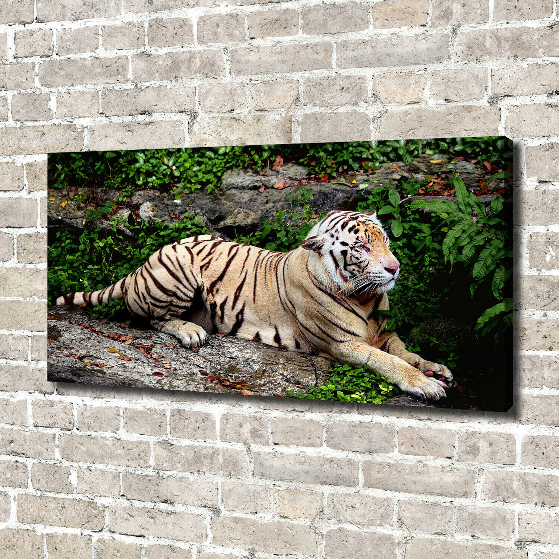 Leinwandbild Kunst-Druck 140x70 Bilder Tiere Tiger auf Felsen