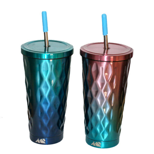 Steel Cup with Screw Lid and Straw Insulated Metal Mug Travel Stainless Tumbler