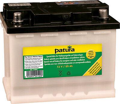 Objective Patura Batteria Speciale Per 12 Volt Akkugeraete 80 Ah Strengthening Sinews And Bones Sporting Goods