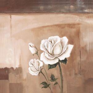 Poster-oder-Leinwand-Bild-A-S-Botanik-Blumen-Rose-Malerei-Braun-A2ES