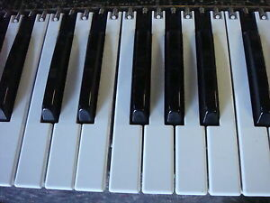 Touche-Clavier-KEYS-Parts-Keyboard-ROLAND-D-50-D50-JX-10-Alpha-Juno1-JUNO-2-KR