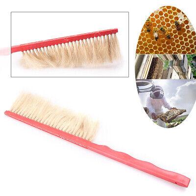 420 x 80 x 10mm Beekeeping Bee Brush Beehive Tool Single Row Brush Industry ha