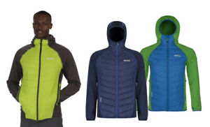 Regatta-Andreson-II-Hybrid-Mens-Water-Repellent-Quilted-Jacket