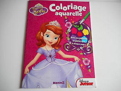 Livre De Coloriage Aquarelle Princesse Sofia Ebay
