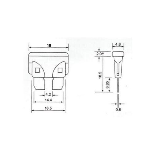KFZ-Sicherungshalter für Flachsicherungen Standard 19mm Sicherungen Halter