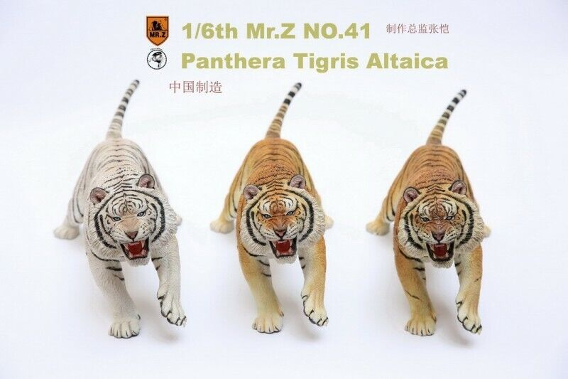 Mr.Z Animal 41st Bomb MRZ041 1 6 Northeast  tiger Siberian tiger 3 Colours Model  qualité officielle