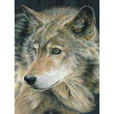 reeves color by number kit 9 x 12 inch wolf ebay