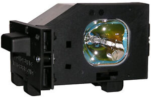 New-Original-Philips-Lamp-Bulb-amp-Housing-for-Panasonic-TY-LA1000-TYLA1000