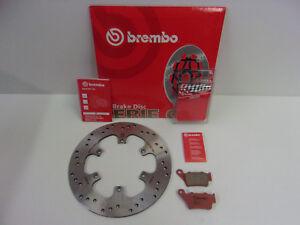 Brembo Bremsscheibe Bremse hinten + Sinter Bremsbeläge Aprilia Pegaso 650 660