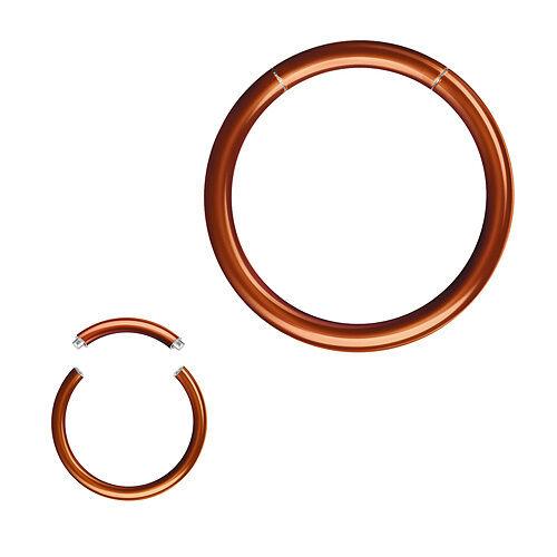 Segment Piercing Smooth Ring