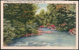 BERKELEY SPRINGS WV Mountain Trout Stram Vintage Old Linen Stream Postcard