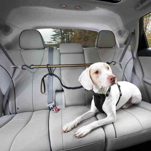 Kurgo Auto Zip Line Car Safety Tether