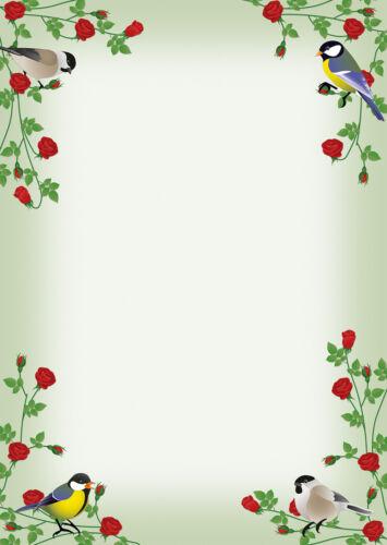 10 Kuverts Meise rote Rosen bunte Vögel Set Motivpapier Briefpapier 20 Blatt A4