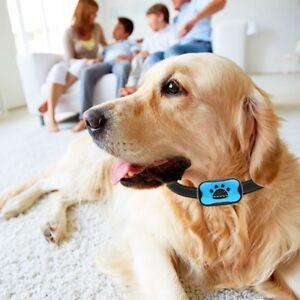 DéLicieux Dog Anti Bark Collar No Bark Collar Inoffensif Et Humaine Sans Choc Pet Training-afficher Le Titre D'origine
