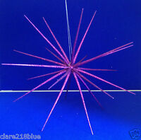 Large Green Hot Pink Purple Glitter Starburst Christmas Hanging Decoration Party