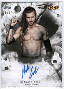 2018-TOPPS-WWE-UNDISPUTED-AUTHENTIC-AUTOGRAPH-AUTO-CARDS-UA-X-U-Pick-From-List