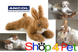 Dog-Toy-Hare-4-Puppy-Dogs-So-Realistic-Most-Dogs-Love-It-Squeaker-Inside-ANCOL
