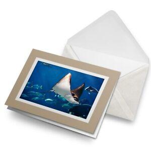 Greetings-Card-Biege-Manta-Ray-Swimming-Sea-Creature-21839