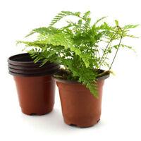 10xMini Plastic Round Flower Pot Terracotta Nursery Planter Home Garden DecorsFG