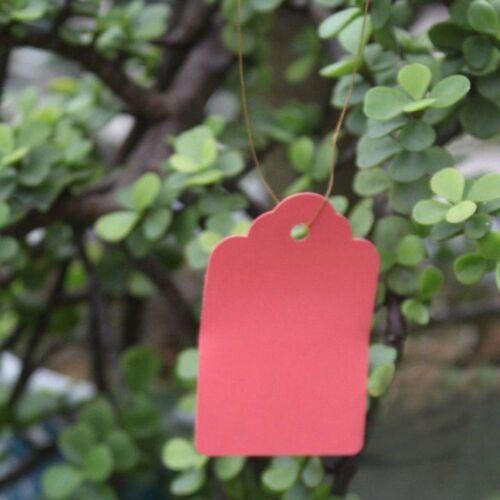 100pcs Strip Mini Hanging Waterproof PlasticTags Gardening Plant Labels