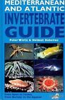 Mediterranean and Atlantic Invertebrate Guide: From Spain to Turkey, from Norway to the Equator by P? Wirtz, Helmut Debelius (Hardback, 2003)