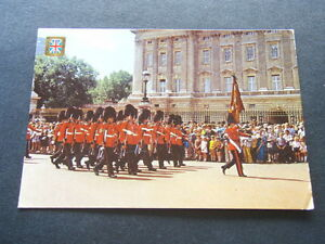 LONDON-THE-QUEEN-039-S-GUARDS-PARADE-1977-POSTCARD