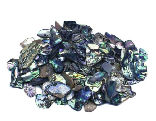 Natural Paua Shell Pieces Jewellery Bead Making Crafts  5-30mm Fines 100grams