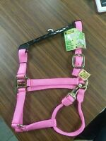 Bmb Premium Horse Size Triple Ply Halter With Brass Hardware Pink Hot Pink