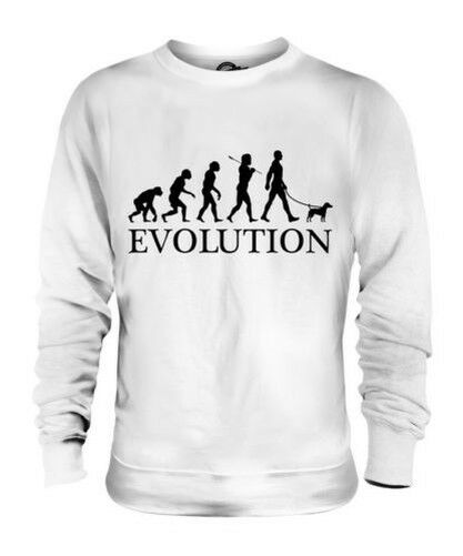 Parson Russell Terrier Evolution Of Man Unisex Suéter Hombre Mujer Perro