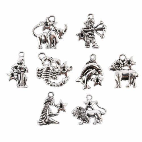 12Pcs Mixed Zodiac Charm Pendentif Dangle Beads for jewelry making Accessoires