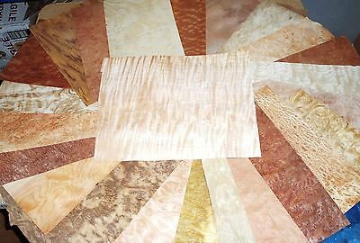 REAL WOOD VENEER EXOTIC BURR SELECTION FOR MARQUETRY,BOX MAKING,PENS,RESTORATION